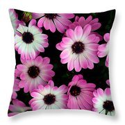Pink And White Daisies Throw Pillow