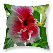 Pink And White Hibiscus Throw Pillow