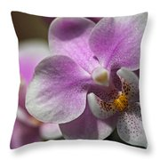 Pink And White Orchid Throw Pillow