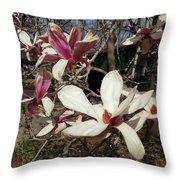 Pink And White Spring Magnolia Throw Pillow