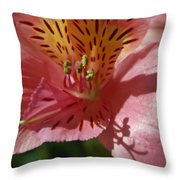 Pink And Yellow Throw Pillow