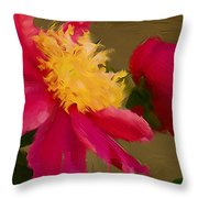 Pink And Yellow Au Deux Throw Pillow