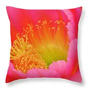 Pink And Yellow Cactus Flower Throw Pillow