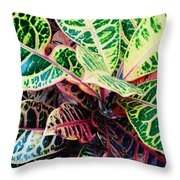 Pink And Yellow Croton Throw Pillow