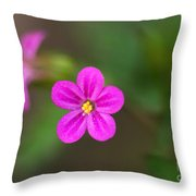 Pink And Yellow Flowers With Green Blurry Background Throw Pillow