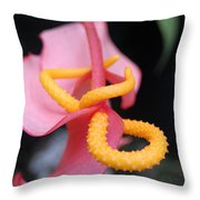 Pink And Yellow Orchids 1 Throw Pillow