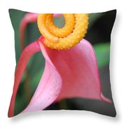Pink And Yellow Orchids 2 Throw Pillow