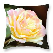 Pink And Yellow Rose Throw Pillow