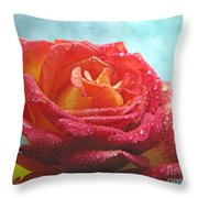 Pink And Yellow Rose With Dew II  Throw Pillow