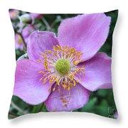 Pink Anemone Flower Throw Pillow