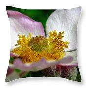 Pink Anemone Throw Pillow