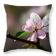 Pink Apple Blossom Throw Pillow