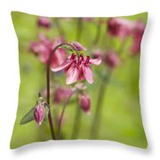 Pink Aquilegia Throw Pillow