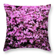 Pink As Pink Can Be Throw Pillow
