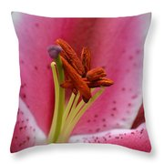 Pink Asiatic Abstract Throw Pillow