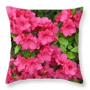 Pink Aura Throw Pillow