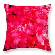 Pink Azalea's Throw Pillow