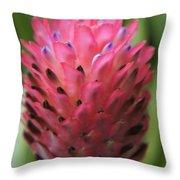 Pink Bloom 2 Throw Pillow