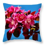 Pink Blossoms Closeup 031015ab Throw Pillow