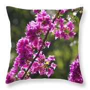 Pink Bougainvillea Sunshine Throw Pillow