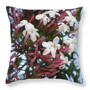 Pink Buds And Jasmine Blossom Close Up Throw Pillow