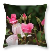 Pink Buds Starting To Open Throw Pillow