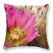 Pink Cactus Flower Throw Pillow