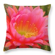 Pink Cactus Flower Of The Southwest Throw Pillow