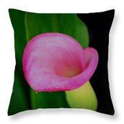 Pink Calla Lily Throw Pillow
