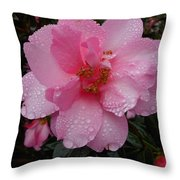 Pink Camelia With Droplets Throw Pillow