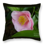 Pink Camellia About To Bloom Throw Pillow