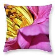 Pink Camellia And Stamen Throw Pillow