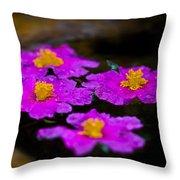 Pink Candle Throw Pillow