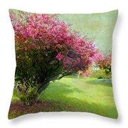 Pink Canopy Throw Pillow