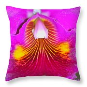 Pink Cattelaya Orchid Throw Pillow