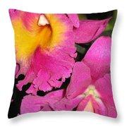 Pink Cattleya Orchid Throw Pillow