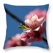 Pink Cherry Tree Blossom Throw Pillow