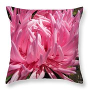 Pink China Aster Throw Pillow