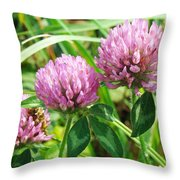 Pink Clover Wildflower - Trifolium Pratense Throw Pillow