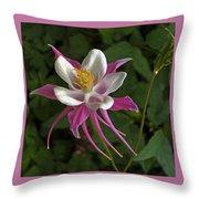 Pink Columbine Flower Throw Pillow