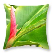 Pink Cone Ginger Bud Throw Pillow