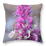 Pink Coned Cabbage Throw Pillow