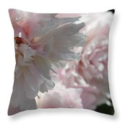 Pink Confection Throw Pillow