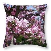 Pink Crabapple Throw Pillow