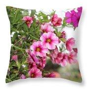 Pink Curtain Throw Pillow