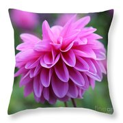 Pink Dahlia Closeup Throw Pillow