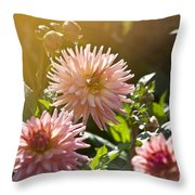 Pink Dahlia Garden Throw Pillow