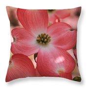 Pink Dogwood At Easter 2 Throw Pillow