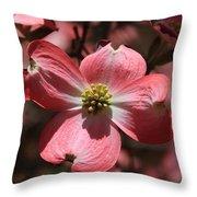 Pink Dogwood At Easter 3 Throw Pillow
