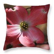 Pink Dogwood At Easter 4 Throw Pillow